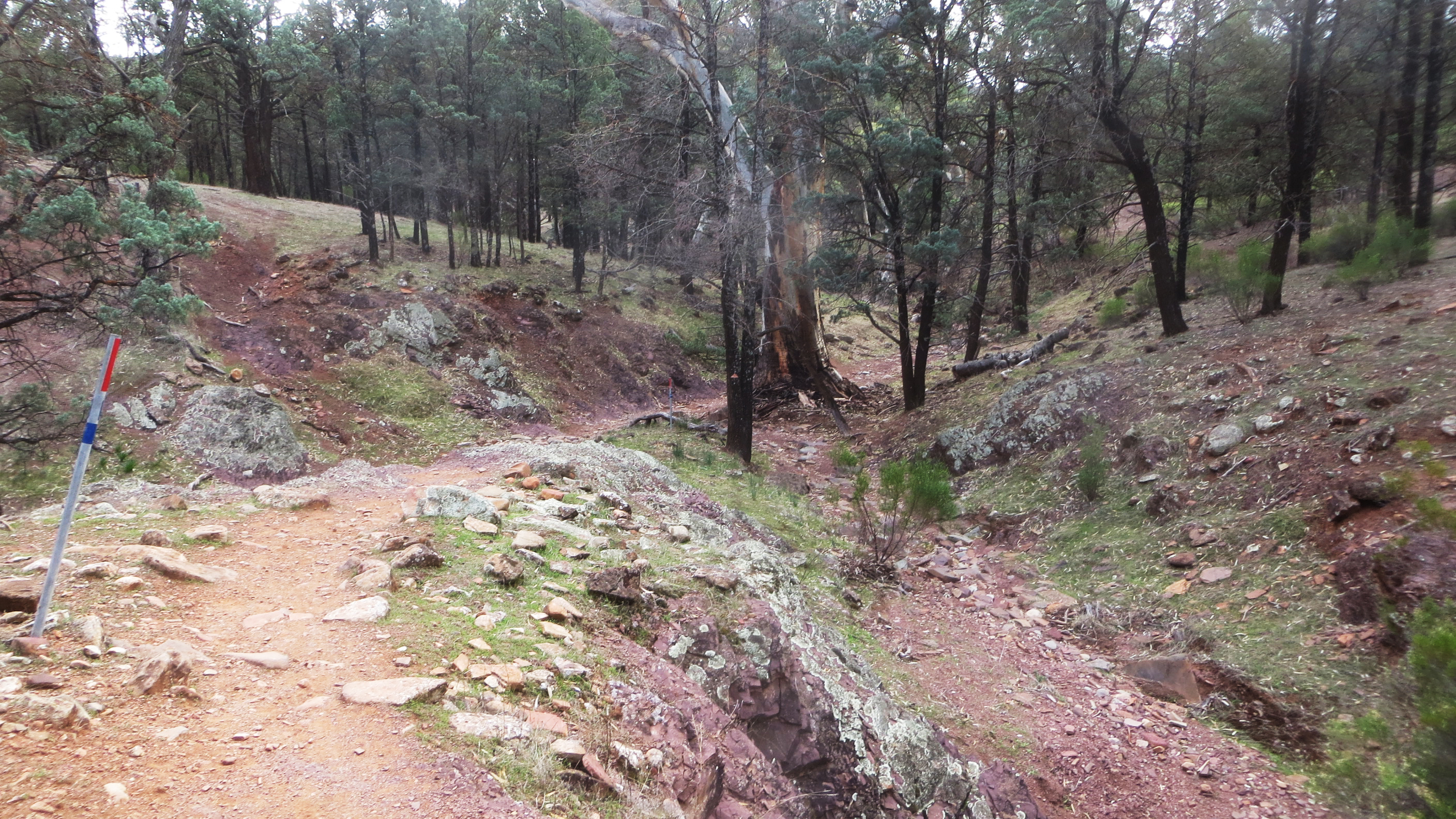 The Mawson Trail Bushwalking On Steroids Adelaide