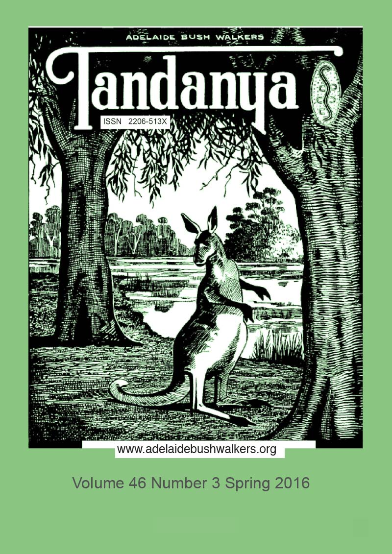 Tandanya Magazine: Spring 2016