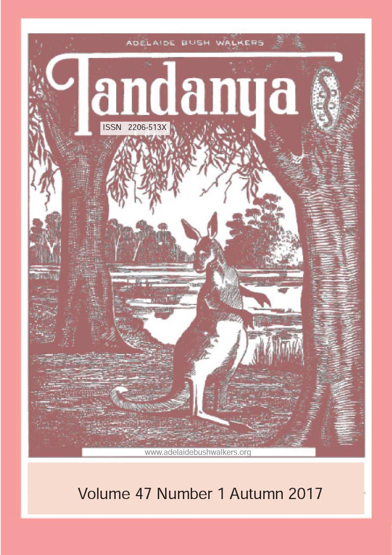 Tandanya Magazine: Autumn 2017