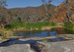 Weetootla Gorge
