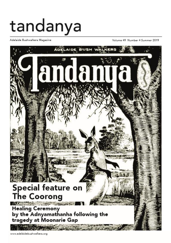 Tandanya magazine: Summer 2019